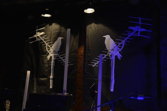 BirdPen w Poznaniu / fot. Natalia Nazar