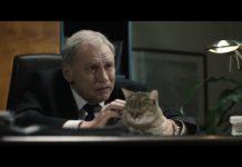 Polityka - Prezes i jego kot