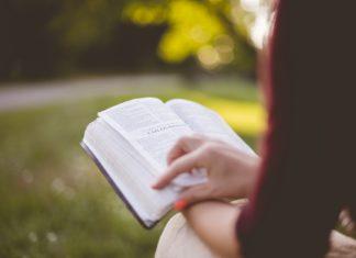 Książki o lecie jesienią
